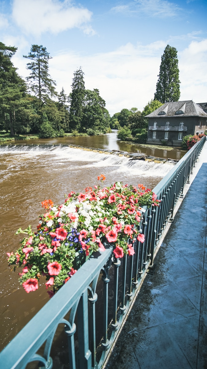 fleurs rivière pont morbihan