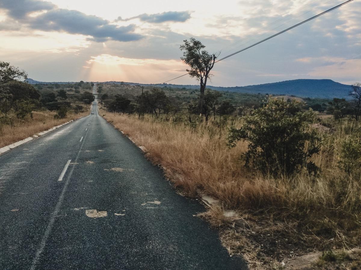route savane kruger afrique sud