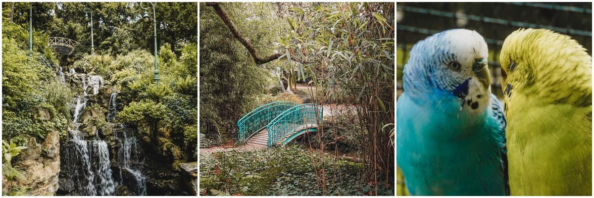 parc oiseaux pont rennes