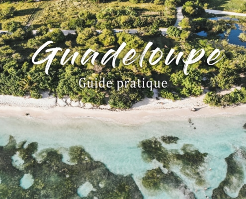 plage mer palmiers guadeloupe