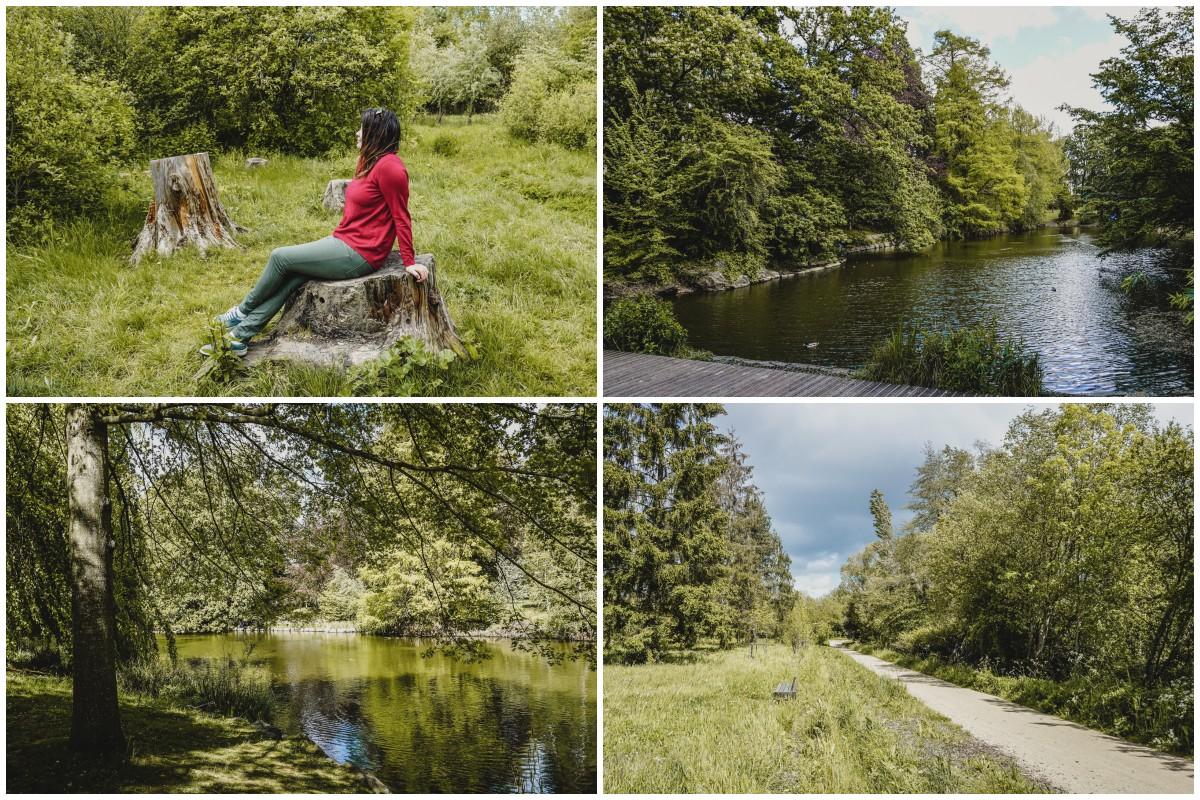 carole parc nature étang rennes