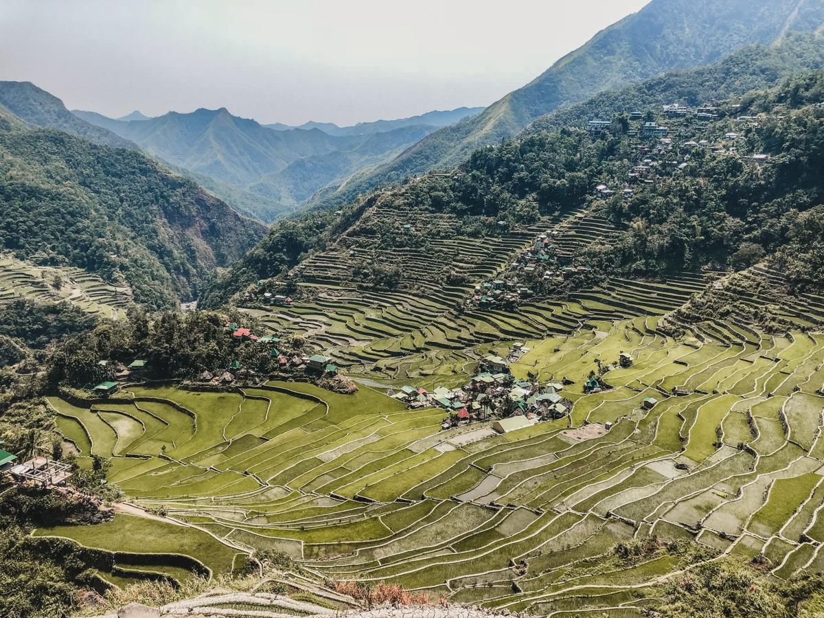 nature rizières philippines