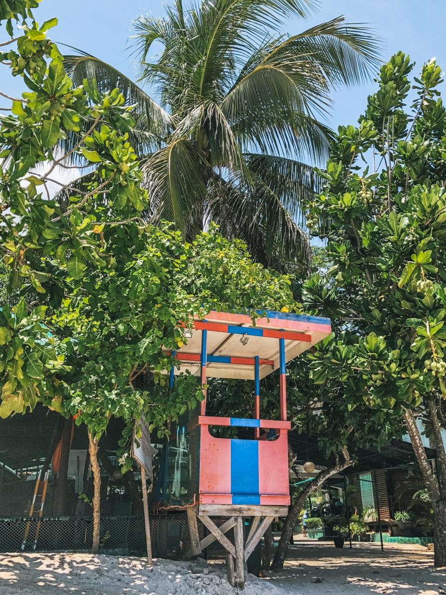 place palmier cabine philippines bohol
