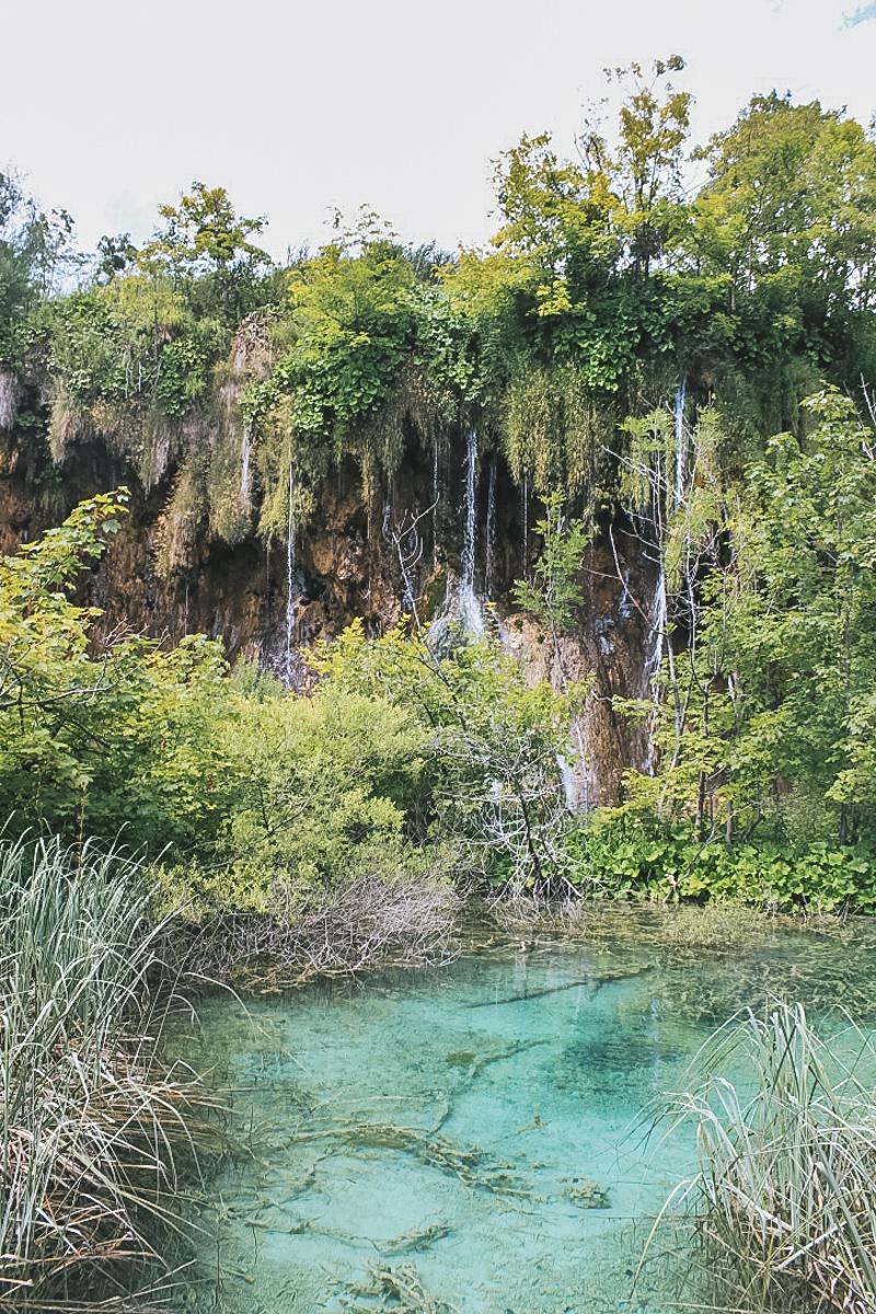 eau bassin nature plitvice croatie