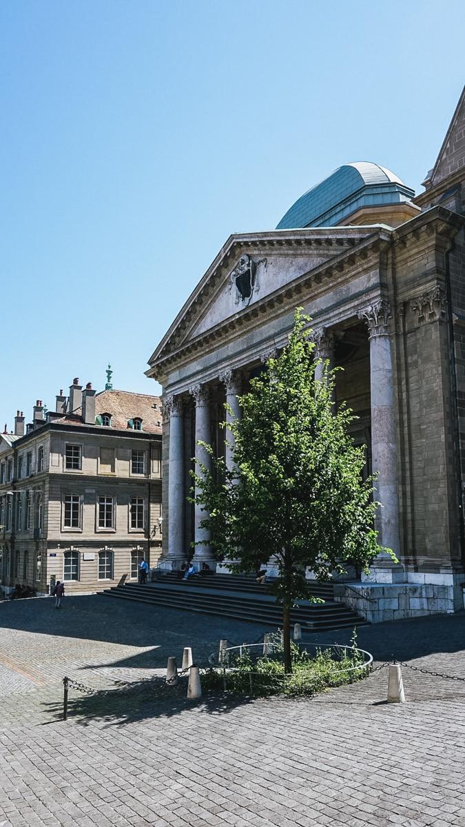 cathédrale arbre suisse genève