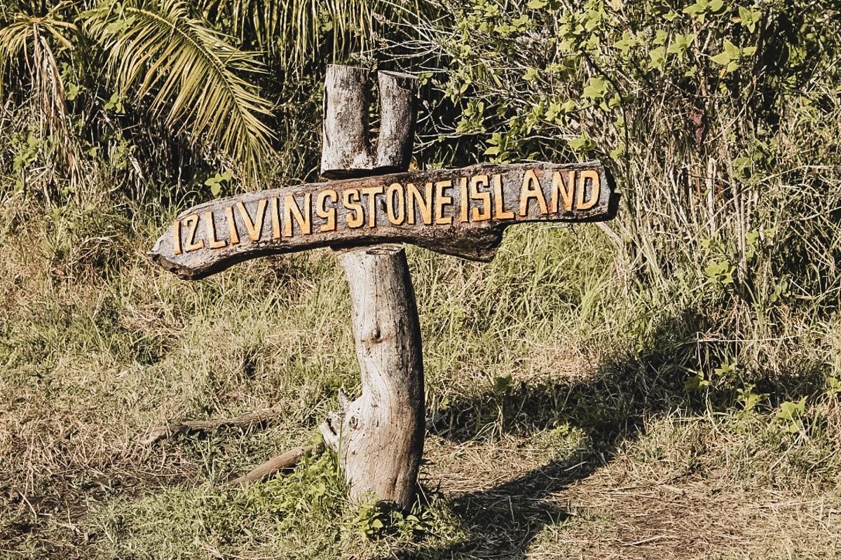 panneau végétation zimbabwe