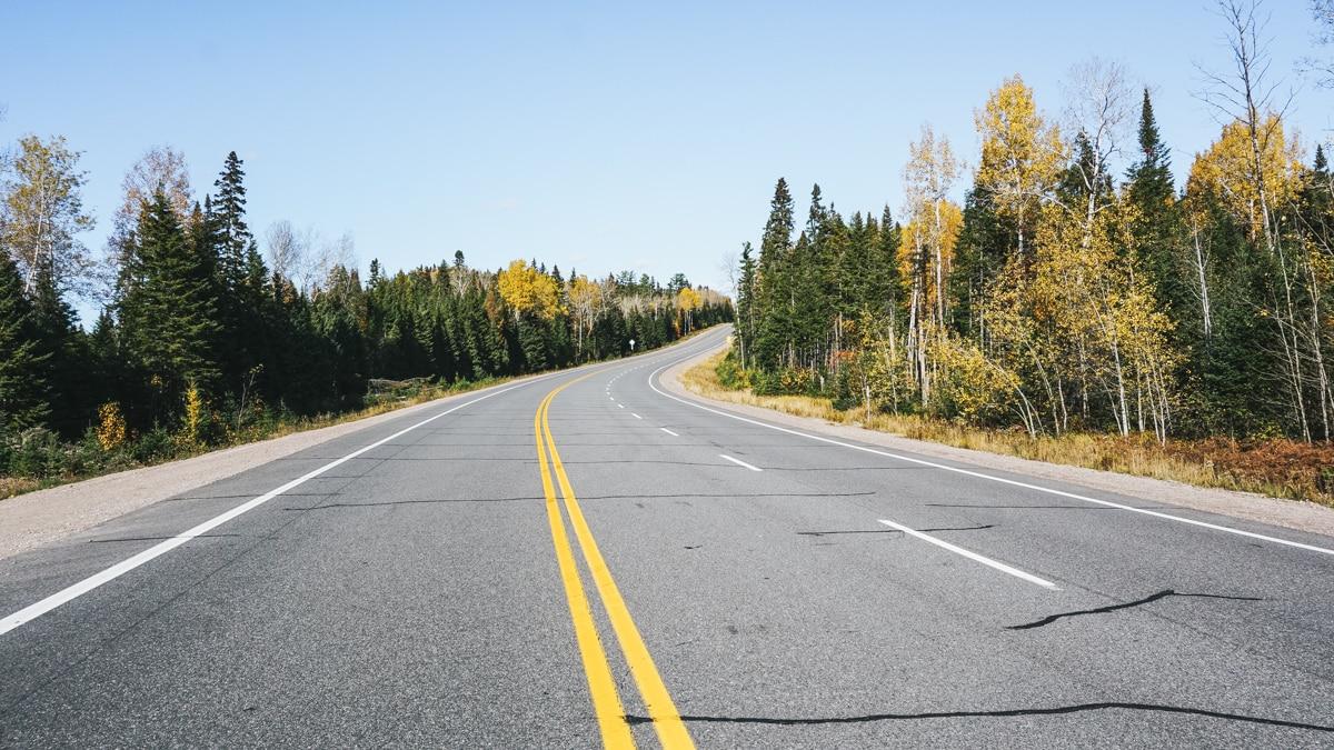 route arbre quebec saguenay