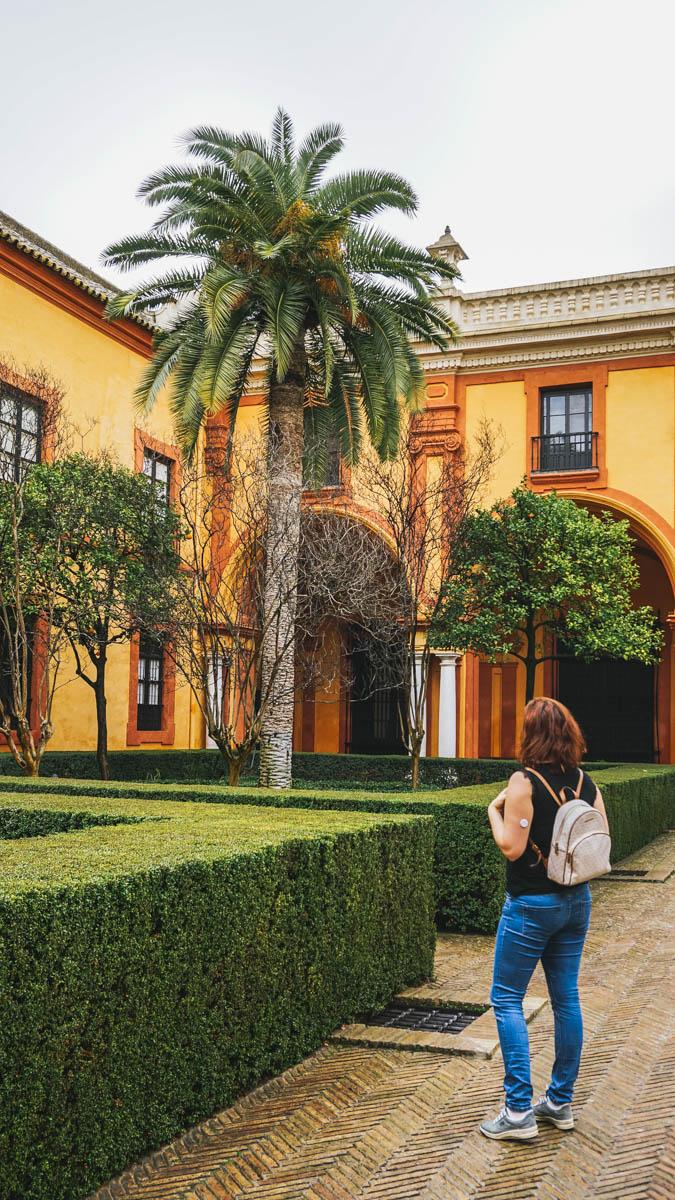 carole palmier seville