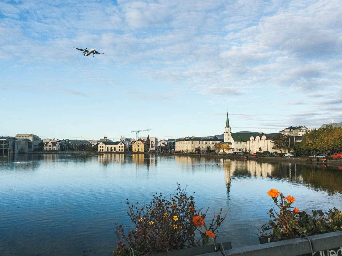 lac avion fleurs Islande reykjavik