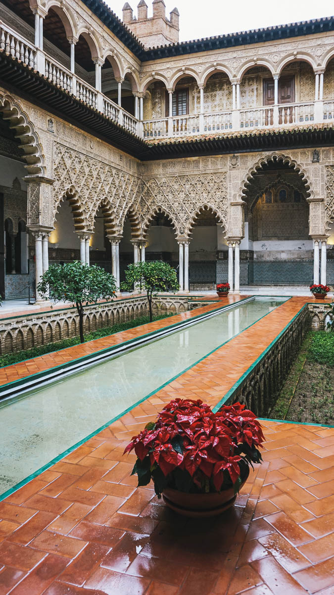 patio fleurs alcazar seville