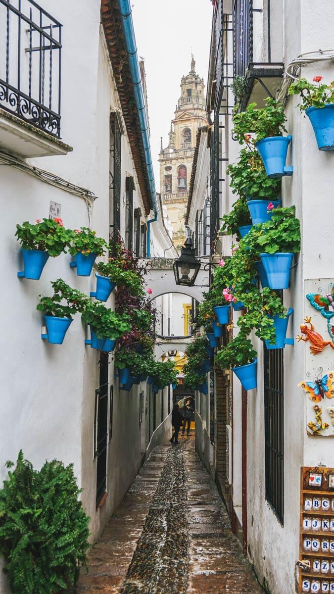 ruelle minaret fleurs judeira cordoue