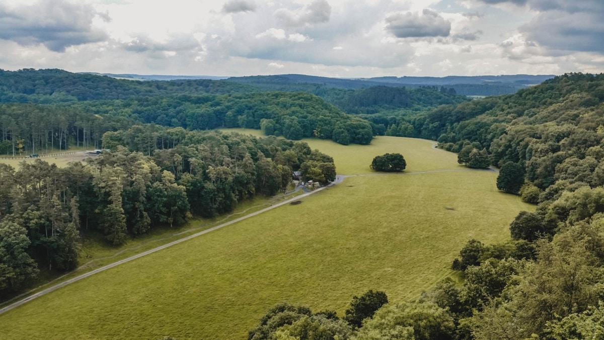wallonie champs forêts belgique