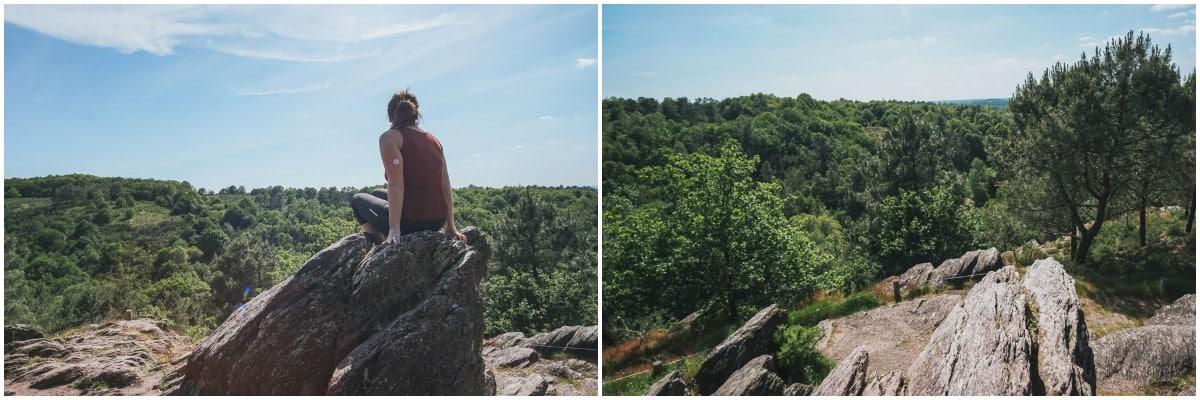carole arbre brocéliande