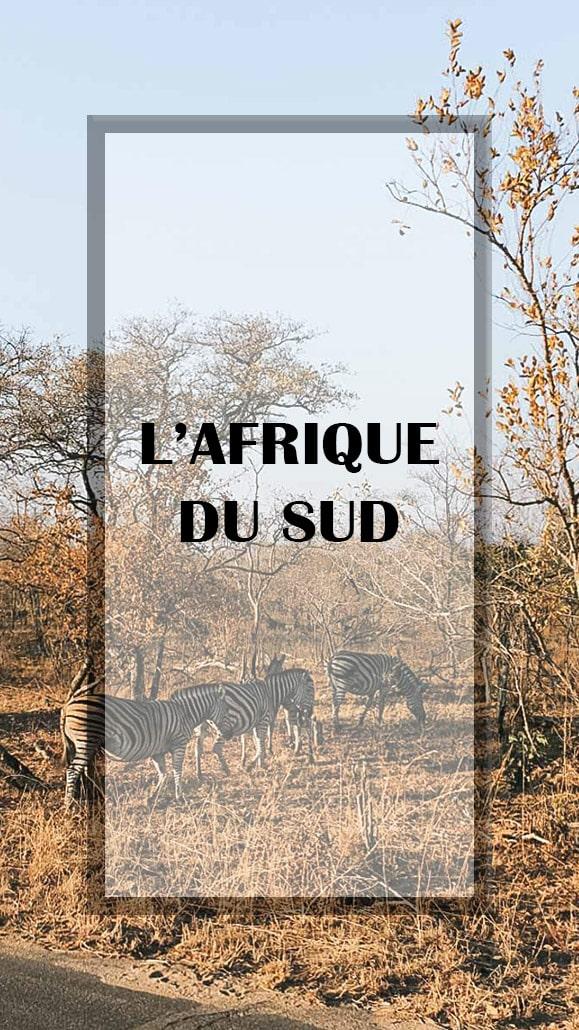 zebre afrique du sud