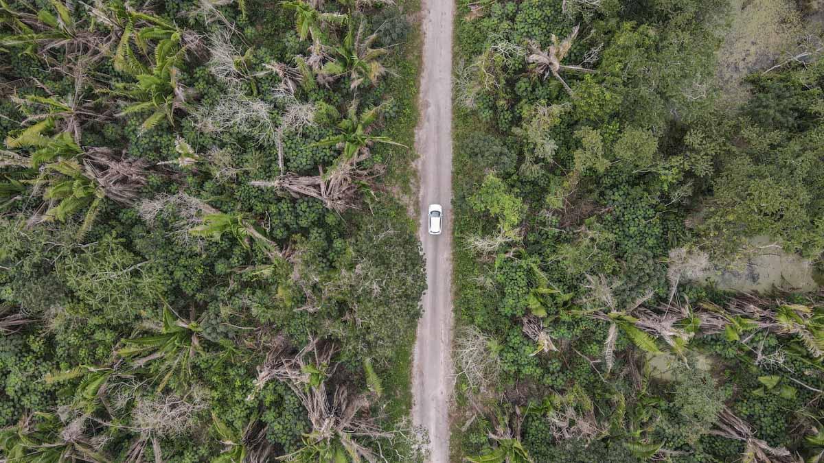 drone voiture jungle mexique