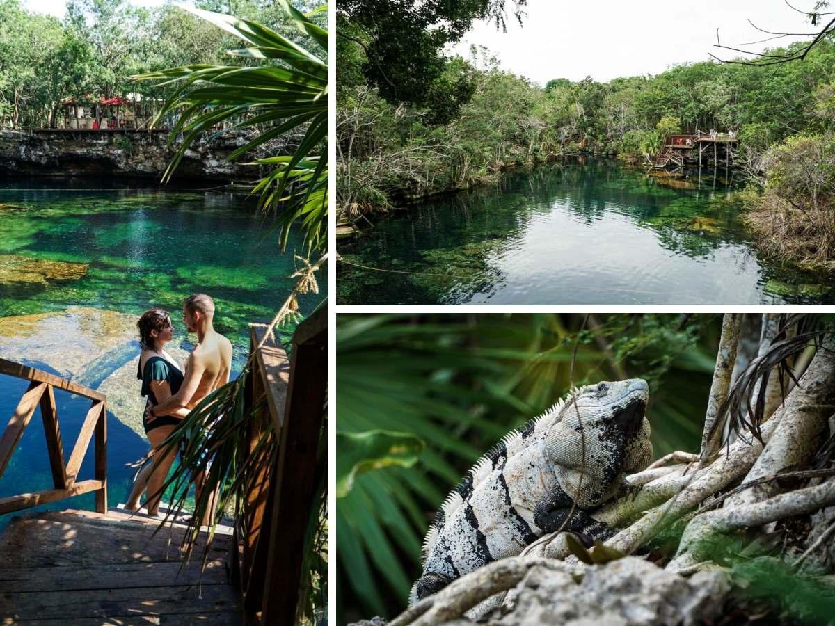 couple iguane cenote