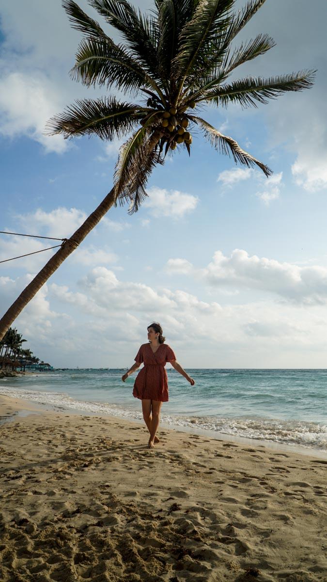 carole plage palmier