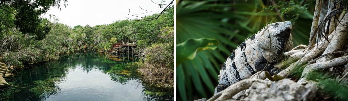 cénote yucatan