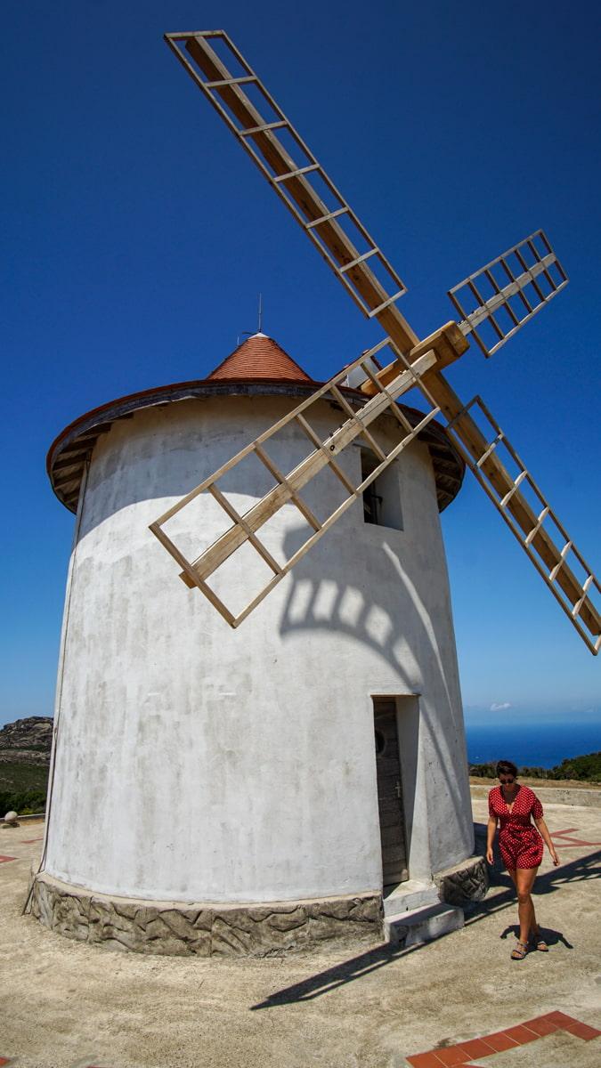 carole moulin